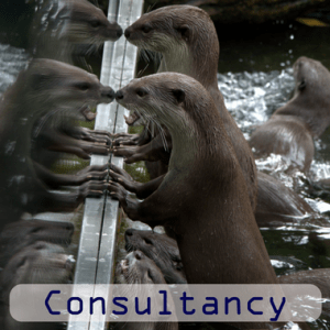 consultancy, digitaljen, jenny smith, small businesses, business advice